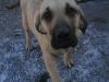 cecilka-8-3-2011-003