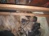 dc-stenata-6-4-2012-007