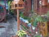 domecek-listopad-2012-005