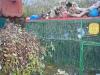 domecek-listopad-2012-013