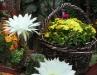 domeeek-leto-2012-021