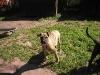 dc-mimina-beata-20-5-2012-015