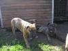 dc-mimina-beata-20-5-2012-035